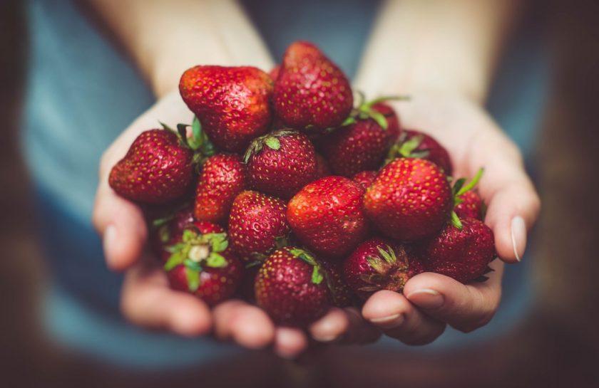 frutos manos