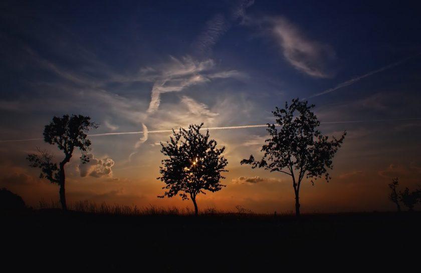 rsz_tree-nature-cloud-sky-sunrise-sunset-1013587-pxherecom