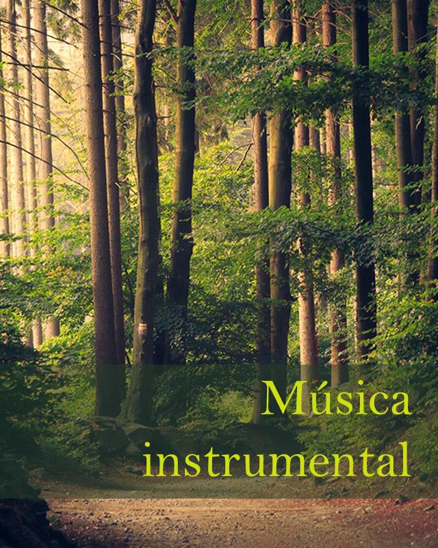 instrumental copy